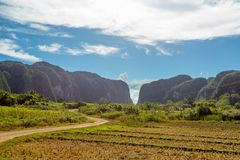 Vinales Valley, Cuba stock images