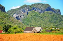 Vinales valley, Cuba Royalty Free Stock Photo