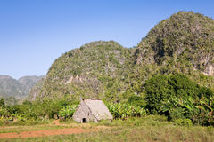 Vinales Valley, Cuba Royalty Free Stock Images