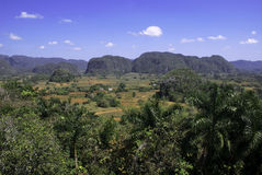 Vinales Valley, Cuba Stock Photography