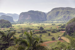 Vinales Valley Stock Photography