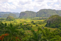Vinales Valley Royalty Free Stock Photo
