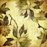 Vinatge floral paper Royalty Free Stock Photos