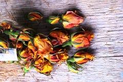 Vinatge Roses On Wooden Background Stock Image