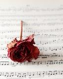 Vinatge sheet music. Vintage sheet music and dried rose Royalty Free Stock Photos