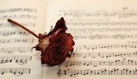 Vinatge sheet music. Vintage sheet music with dried rose Royalty Free Stock Image