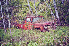 Vinatge truck. An old abandoned pick up truck in the country Stock Images
