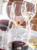 Vinavsmakning i den Alentejo regionen, Portugal royaltyfri foto