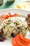 vinbär torkade rice Royaltyfri Bild