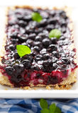 Vinbärblåbärpaj Arkivfoton