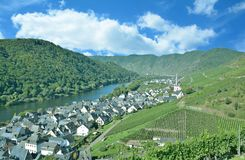 Vinby av Ediger-Eller, Mosel dal, Tyskland royaltyfri fotografi