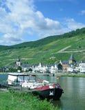 Vinby av Zell, Mosel dal, Tyskland Royaltyfria Foton