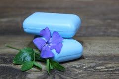 Vinca naturale del fiore e del sapone Fotografia Stock