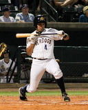 Vince Conde, Charleston RiverDogs Stock Images