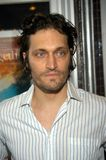 Vincent Gallo Royalty Free Stock Photography
