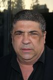 Vincent Pastore Royalty Free Stock Photography