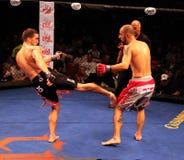 Vincent Ramirez Mixed Martial Artist Royalty Free Stock Image