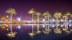 Vincent Thomas Bridge. And Palm Tree reflections in San Pedro, Los Angeles, California Stock Images