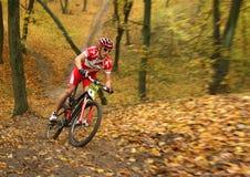 Vincitore sulla bici. Fotografie Stock Libere da Diritti