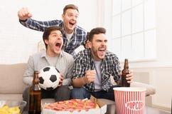 vincitori Fan che guardano partita e che bevono birra fotografia stock