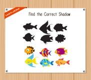 Vind de correcte schaduw, onderwijsspel voor kinderen - Vissen Stock Afbeeldingen