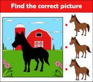 Vind het correcte beeld, onderwijsspel voor kinderen Paard in het landbouwbedrijf royalty-vrije illustratie
