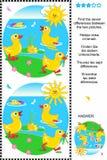 Vind het verschillen visuele raadsel - eendjes Stock Foto