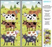Vind het verschillen visuele raadsel - koeien Royalty-vrije Stock Foto's