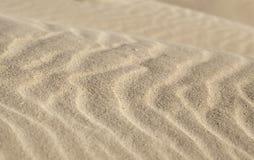 Vind- och sandmodell royaltyfria bilder