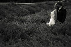 Vind packar vänner - bröllopparställningar i ett högt gräs in royaltyfri foto