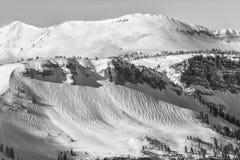 Vind skvalpar på snön Royaltyfri Foto