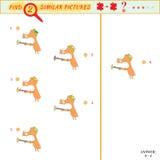 Vind twee gelijkaardige beelden Stock Fotografie