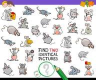 Vind twee identieke muizen onderwijsactiviteit Royalty-vrije Stock Foto
