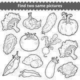 Vind twee zelfde beelden Vector reeks groenten stock illustratie