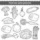 Vind twee zelfde beelden Vector reeks groenten vector illustratie