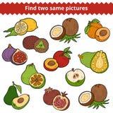 Vind twee zelfde beelden Vector reeks vruchten stock illustratie