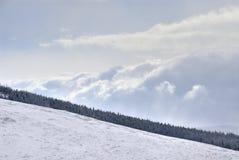 Vinda dramática da tempestade da neve Fotografia de Stock Royalty Free