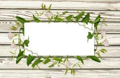 Vindablomma och sidor i en ram på vitt trä Arkivbild
