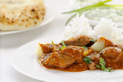 Vindaloo lamb curry Royalty Free Stock Image