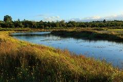 Vindar för en flod till och med en gräs- äng royaltyfria bilder