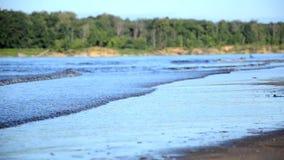 Vinden kör vågorna på floden, sjön, vågor på en sandig strand arkivfilmer