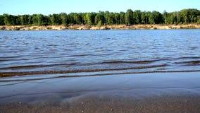 Vinden kör vågorna på floden, sjön, vågor på en sandig strand stock video
