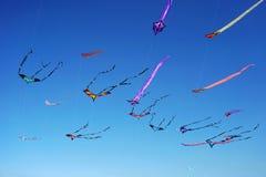 Vindfestival på den Bondi stranden, Sydney, Australien på 10 September 2017 Färgrika drakar i himlen som berömd händelse på Bondi Royaltyfria Foton
