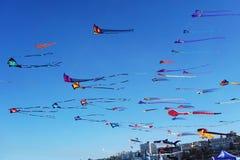 Vindfestival på den Bondi stranden, Sydney, Australien på 10 September 2017 Färgrika drakar i himlen som berömd händelse på Bondi Royaltyfria Bilder