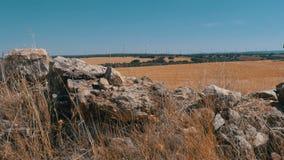 Vindkraft i öknen av Spanien stock video