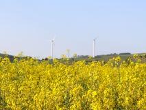 Vindkraftstation i rapfält Roterande blad av energigeneratorer Ekologiskt ren elektricitet Moderna teknologier för Royaltyfria Foton