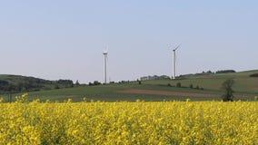 Vindkraftstation i rapfält Roterande blad av energigeneratorer Ekologiskt ren elektricitet Moderna teknologier för stock video