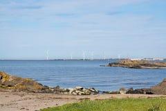 Vindkraftturbiner och naturlig hed royaltyfria foton
