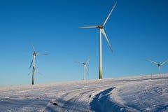 Vindkraftväxter i vintern Royaltyfri Fotografi