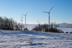 Vindkraftväxter i vintern Royaltyfri Bild